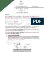 COURS BG1 part III (multiplication végétative)