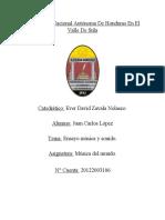Ensayomusicaysonido.pdf