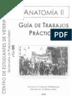 Guía Tp Anato 2
