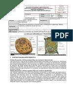 guia de biologia   grado 6 2021  CÉLULA ORGANELOS Y FUNCIONES COORDINADORA GUIA No 2 (5)