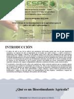 GRUPO 4- Uso de Bioestimulantes en cultivo de café arábigo