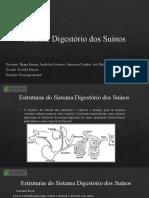 Sistema Digestório dos Suínos