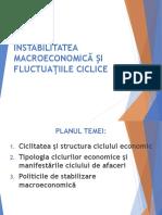 Tema 7_ Instabilitatea macroeconomica si fluctuatiile ciclice