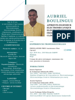 CV BOULINGUI NGOT