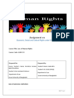 Human Rights Mid-converted