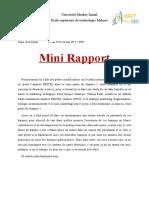 Mini Rapport