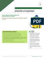 Fichas ténicas Protocolo Minsal Plaguicidas._compressed