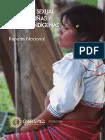 Violencia Sexual contra Niñas y Jóvenes Indígenas Reporte Nacional