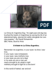tribute to la china argentina dog