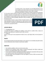 Estructura Programa Daniel n2 g2 (14)