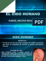el-oido-humano-1194366401124608-2