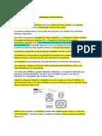 Membrana Citoplasmática Info