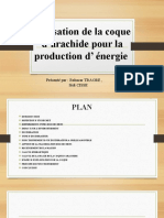 Utilisation de La Coque d'Arachide Pour La Production