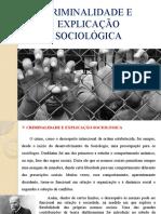 CRIMINALIDADE E EXPLICAÇÃO SOCIOLÓGICA