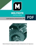 Guía de Selección de Lubricantes Industriales Molykote