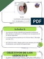 MD-Expo-Arboles B