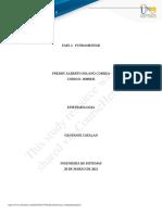 Freddy Solano Fase 2 Fundamentar.docx