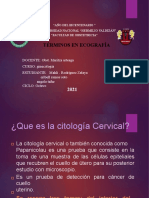 Citologia Cervical - Trab. Ginecologia