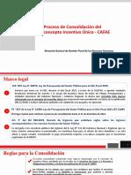 Proceso Consolidacion IU