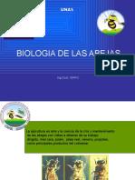 Biologia de Las Abejas17