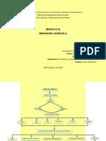 MAPA CONCEPTUAL MERCADEO AGRICOLA