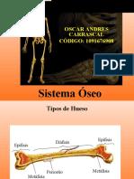 Sistema Oseo Oscar