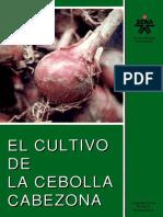 Cultivo Cebolla Cabezona