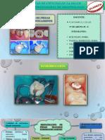 Restauraciones de Piezas Tratadas Endodonticamente