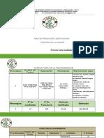 Presentación  de Avances del Plan de Trabajo