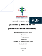 1 trabajo grupal (calculos y analisis de p. de la hidraulica)