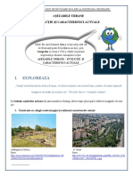 Asezari urbane - evolutie si caracteristici  actuale