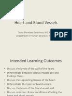 _Micro A_ Heart & BV's