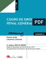 (AMPHI LMD) Patrick Kolb, Laurence Leturmy - Cours de droit pénal général-Gualino (2019)
