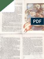 Vrajitorul Din Oz- Frank Baum (Prima Pagina La Sfarsit, Penultima Cuprins)