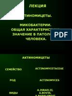 Курс лекций ИН - микобактерии, актиномицеты