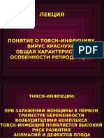Kurs_lektsiy_-_TORCH_KRASNUKhA