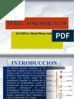 adrenergicosbon-161123073606