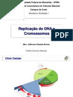 Replicação do DNA e cromossomos
