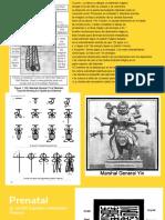 taller sellos manual