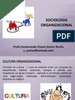 Aula 04 (1) Sociologia Das Organizações CULTURAORGANIZACIONAL