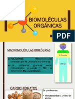 Biomoléculas Orgánicas UPN