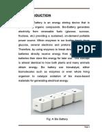 261715409-Bio-Battery-Doc