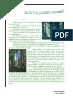 Padurea un izvor pentru oamenii
