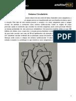 Apostila - Anatomia - Sistema Circulatório