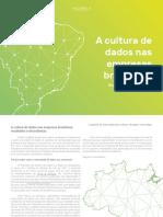 Cultura de Dados Das Empresas Brasileiras