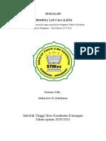Makalah MIdwifery Led Care ( S1 Kebidanan tingkat 1)