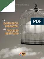 A Experiência Paradoxal do Processo Identitário