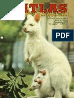 Atlas Supermagazin