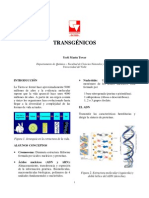 Transgenico s