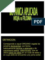 Hoja o Filoma